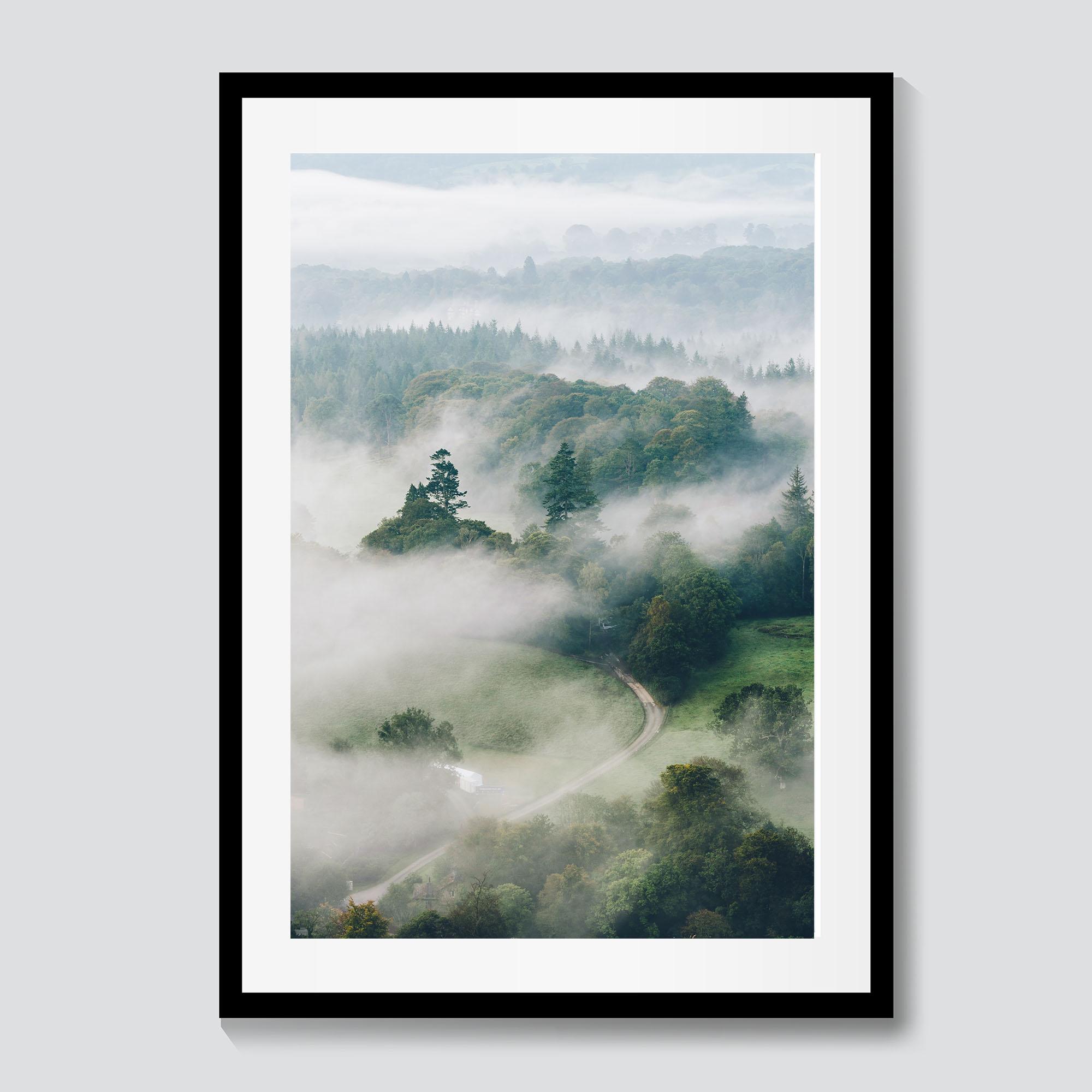 Evergreen Mist | Lake District Photography Prints | CAlum Lewis photography